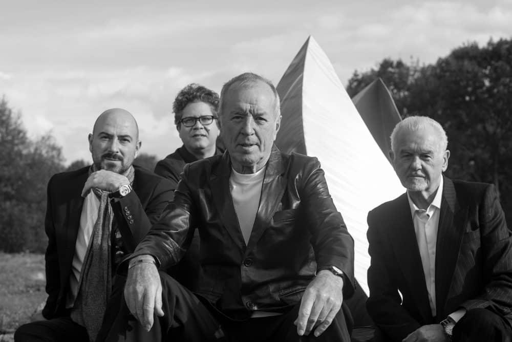 Animals and Friends, John Steel, Danny Handley, Roberto Ruiz, Mick Gallagher
