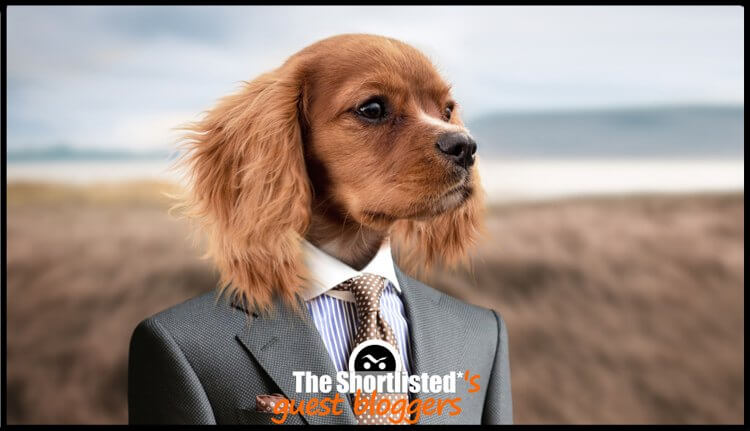 Dog employee with suit and tie photomontage