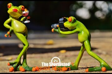 Funny frogs toys taking influencer pictures