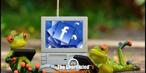 Funny frogs toys working on a computer with Facebook